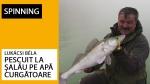 Pescuit la șalău pe apă curgătoare
